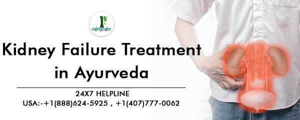 Ayurvedic Treatment For Kidney Failure The Safest Possible Cure Om Pharma Ayur